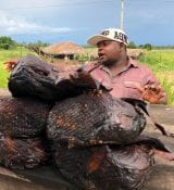 FoodTechAfrica Tanzania Catfish Sold Allong The Road