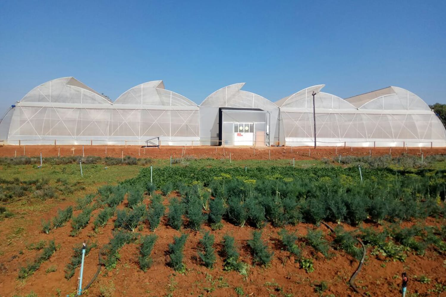 The demonstration greenhouse in Heho, Shan State, Myanmar