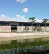 Riga's Safina's BigFish farm in Dar Es Salaam