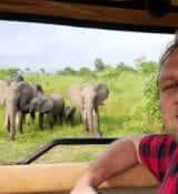elephants kenya safari leisure